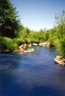 02_creek